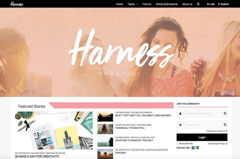 portfolio-harness-1024x683