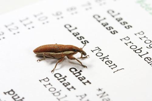 fix-bugs