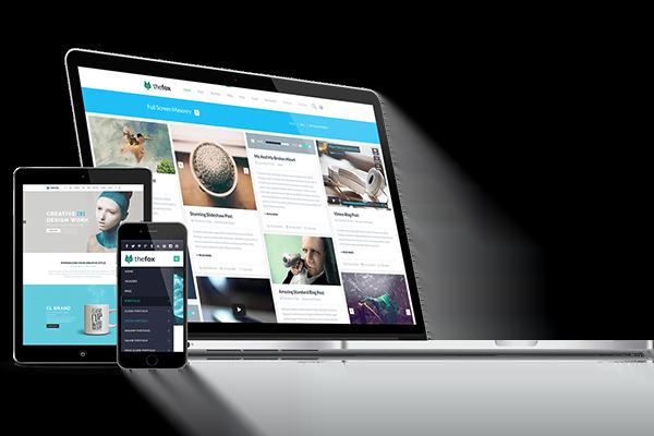 premium-web-design-package