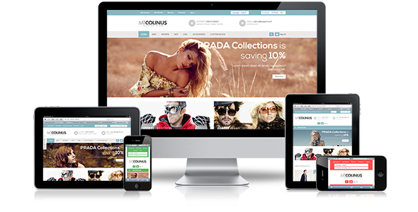 wooCommerce-development-premium-themes
