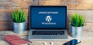Why update my WordPress website?