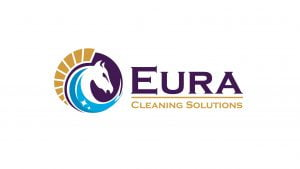 Logo Design - cleaning company