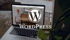 Why WordPress is the best CMS for businesses