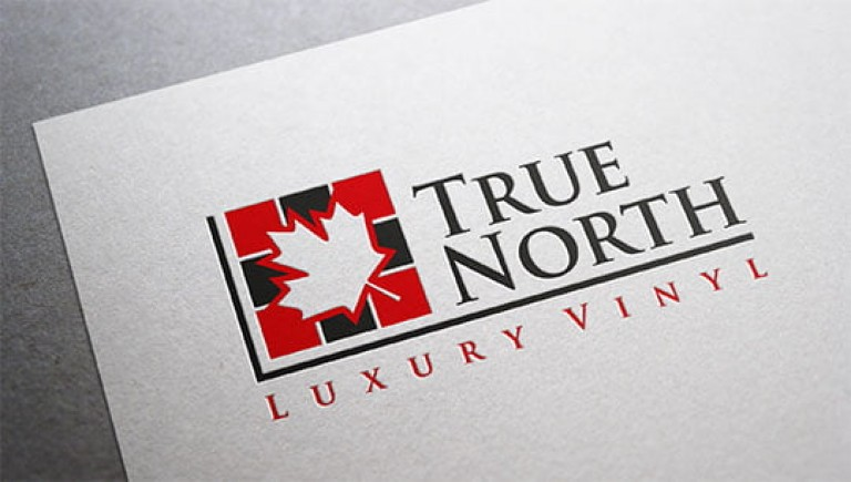 logo-design-true-north